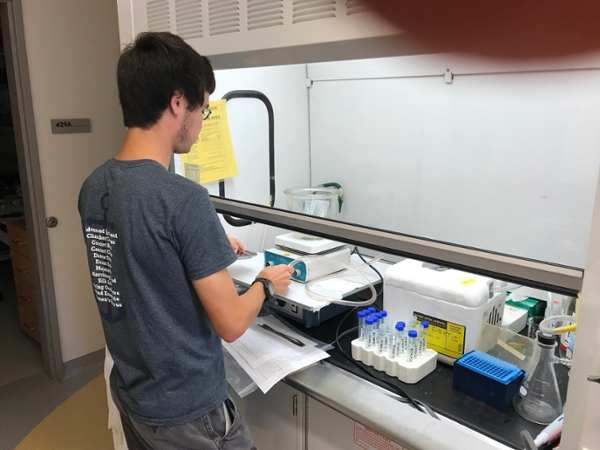 Josiah evaporating ethanol from saponin extracts